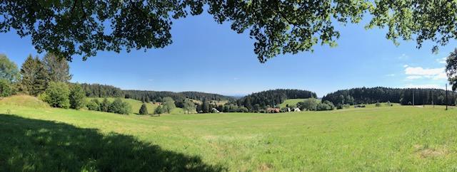 Bei Gersbach im Schwarzwald