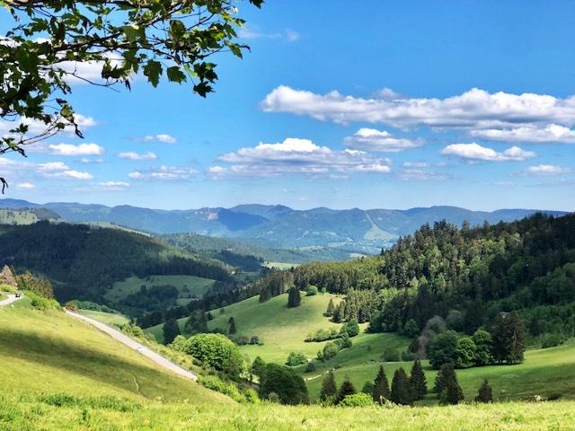 Riedichen, Baden-Württemberg (D)
