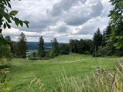 Bodenwald