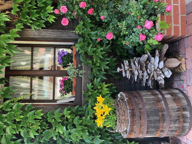 Blick ins Blumenfenster