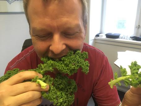 Stress-venlig kost: Her er ernæringsekspertens bedste råd