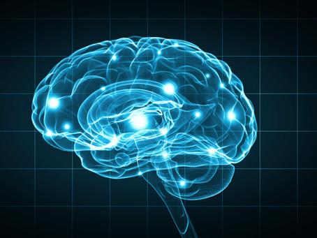 Hvordan du lærer din stressede hjerne at være cool, når lokummet brænder