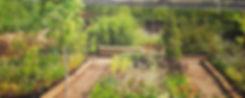 Le Bassin Jardiné - Collectif Les Jardiniers Nomades Domaine de Kerguéhennec & Lieux Mouvants Bignan - France 2014