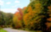 road HFC 2.jpg