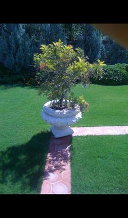 www.izmirheykel.com-saksı-dekor-garden.