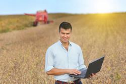 okla wheat field