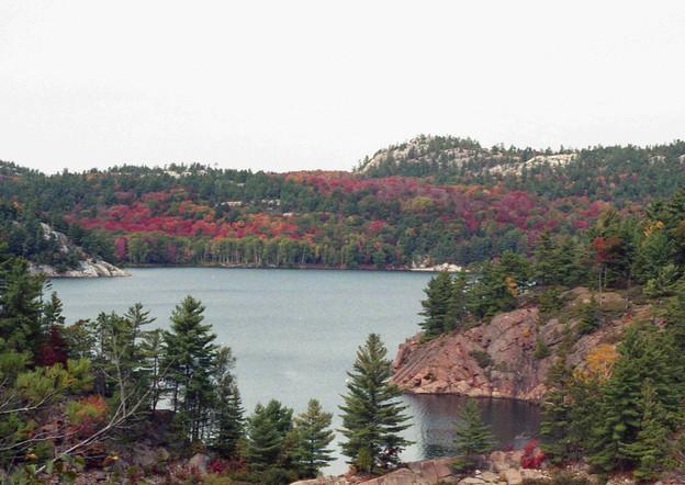 Fall in Canada