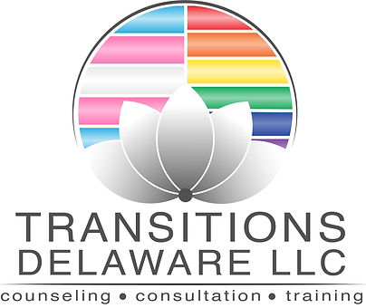 Transitions Delaware LLC.jpg