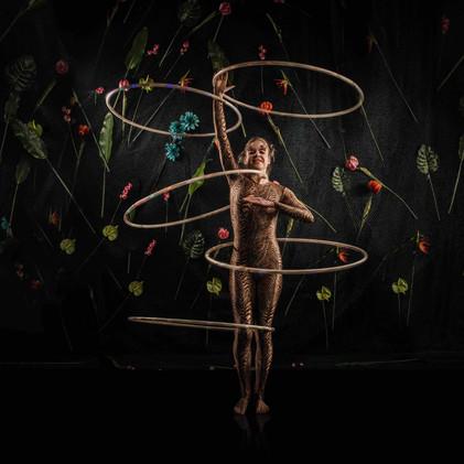 Amazon tiger hula hoops.jpg