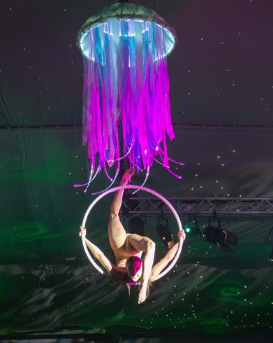 Jellyfish hoop 2.jpg