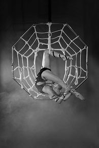Spider aerial act, aerialist, contortionist, unusual circus acts, circus, halloween events, halloween, halloween circus, shows, events, themed events