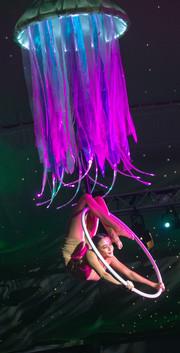 Jellyfish hoop 1.jpg