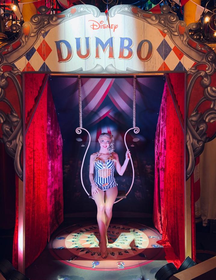 Circus trapeze .jpeg