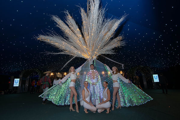 LED wings,LED acts, LED circus act,  LED costumes