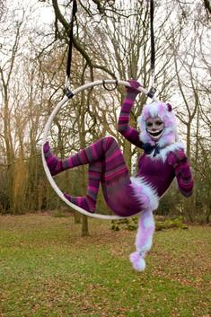 Cheshire cat hoop 1.jpg