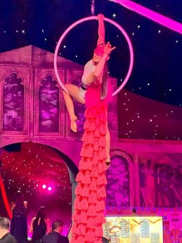 Aerial Hoop Costume.jpg