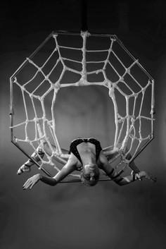 Spider aerial 1 .jpeg