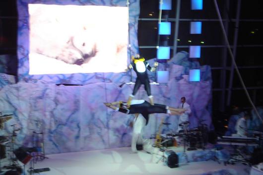penguin trapeze 2.JPG