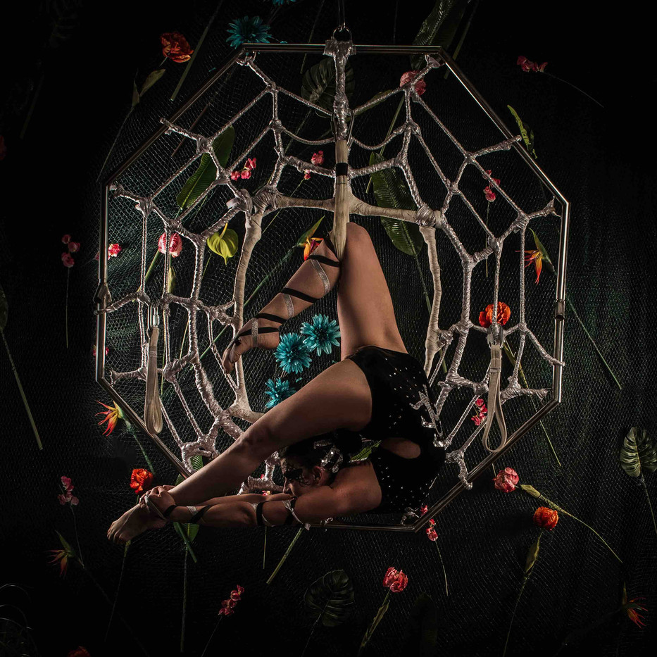 Amazon bendy spider.jpg