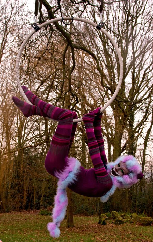 Cheshire cat hoop 2.jpg