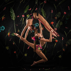 Themed events, Circus, Aerial hoop,Amazon themed circus,duo aerial hoop twins