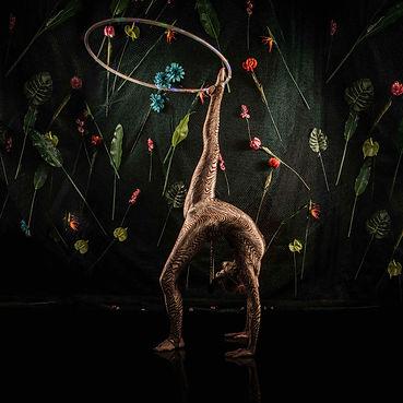 Amazon tiger hula hoops bridge.jpg
