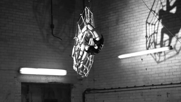 SPIDER aerial contortion