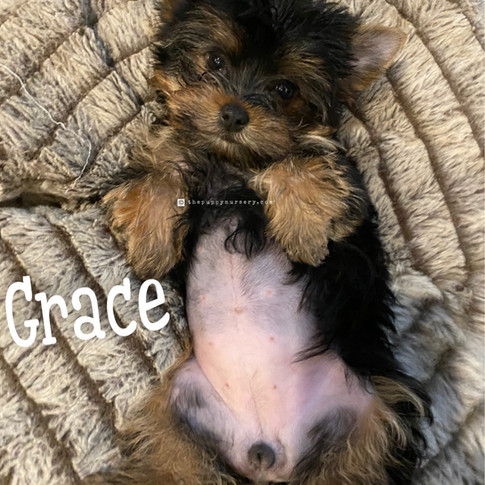 Click to see more pics of Grace!