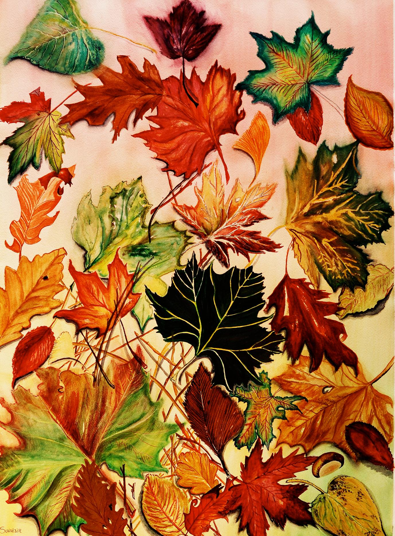 Souvenirs D'automne 2004