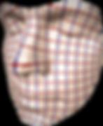 parametrization_edited.png