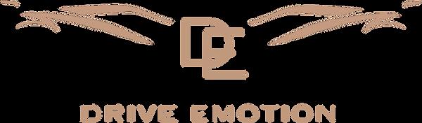 logo Drive emotion V.1-19.png