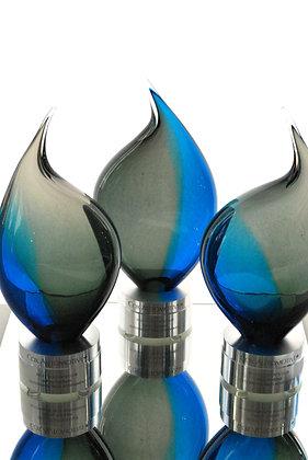 Two Tone Award