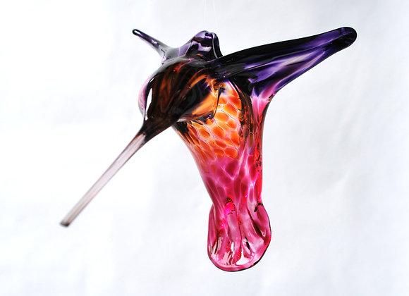 Purple, Gold and Ruby Hummingbird