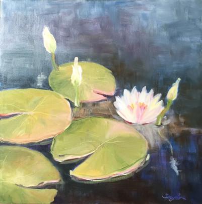 Lilies & Blossom