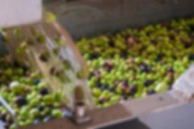 olive-mill.jpg