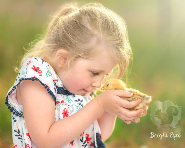 little-girl-baby-chick-brighteyesphotogr
