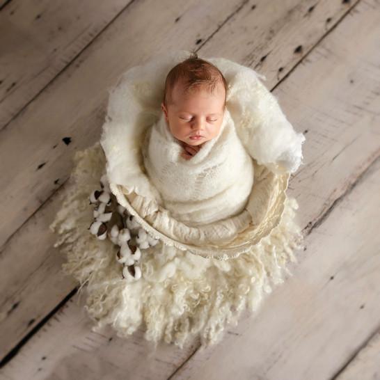 baby-in-cream-newborn-bucket.jpg