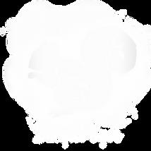 bright eyes logo whte on white-2.png