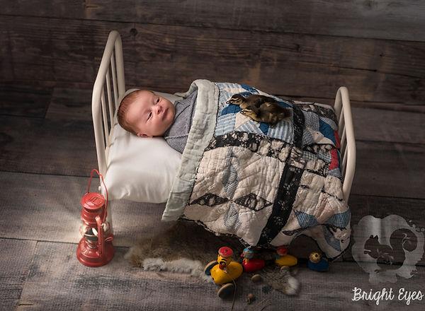 dunedin_baby_photos.jpg