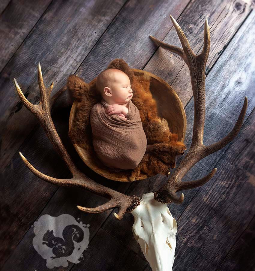 newborn-baby-antlers-deer.jpg