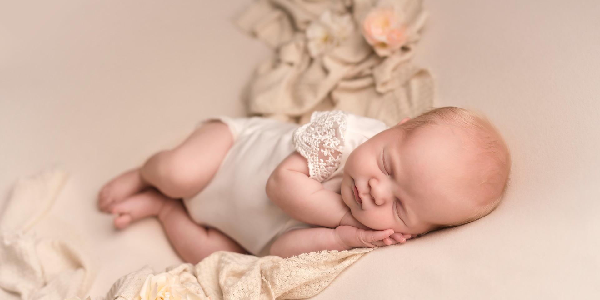 dunedin baby photographer roses.jpg