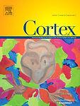 cortex1.jpg