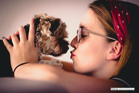 dogs_emotions_pe.jpg