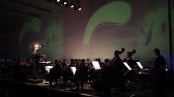 New London Orchestra.mov.Still006.jpg