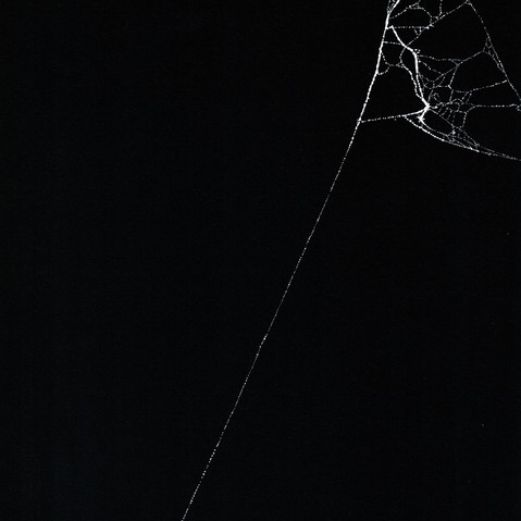Entanglement 26  monoprint on black paper made directly from a spiders web, 29.7x42cm