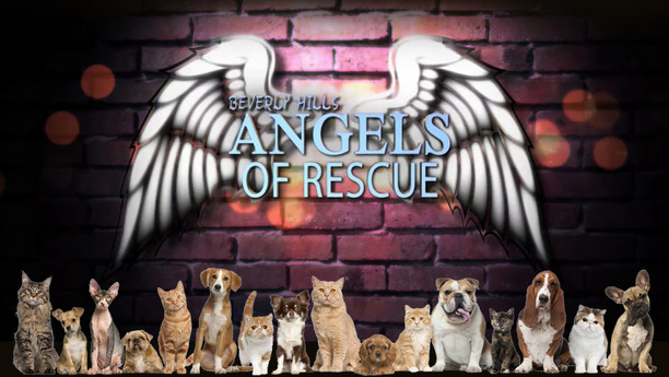 Beverly Hills Angels of Rescue