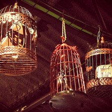 CAGES WITHOUT BIRDS