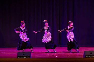 flamenco_2B.jpg