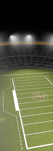 Stadium Daily