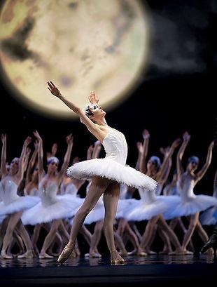 SwanLake_BalletMagazine.jpeg